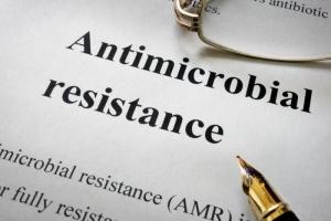 La solución a la resistencia a los antimicrobianos puede ser muy pequeña