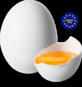 La avicultura, único sector ganadero que crece según la CE